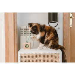 Dyfuzor Zapachowy CRISTALINAS PETS CUBO Fresh Air 30 ml | Świeże Powietrze CRISTALINAS - 4