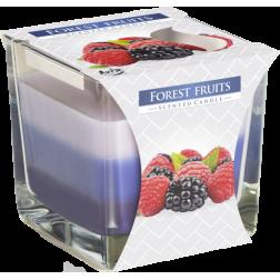 Trójkolorowa Świeca w Szkle Bispol Forest Fruit | Owoce Leśne
