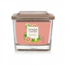 Yankee Elevation Jasmine & Pomelo Średnia Świeca Zapachowa 3 knoty