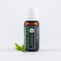 Naturalny Olejek Eteryczny do Aromaterapii 100% Drzewo Herbaciane Scentimeter Aromatherapy