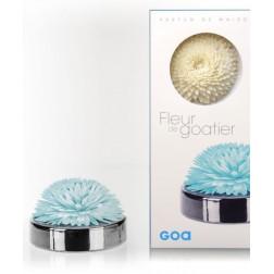 Dyfuzor zapachowy Patchouli Cedrat GOA Puderniczka Srebrna + kwiat tapioki